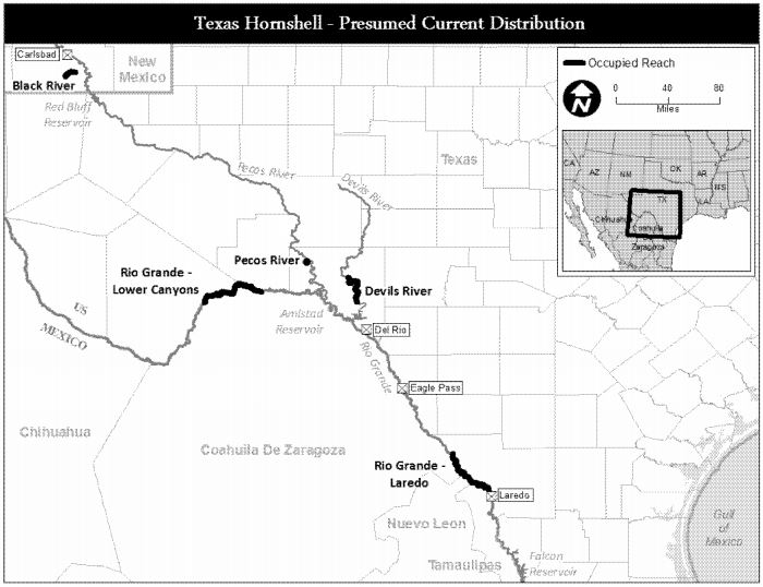 Source: (USFWS)U.S. Fish and Wildlife Service. 2016. Endangered and Threatened Wildlife and Plants; Endangered Species Status for Texas Hornshell. Federal Register, vol. 81,p. 52796